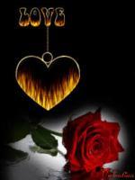 الصورة الرمزية مدرسة الحب