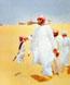 الصورة الرمزية رجل الصحراء